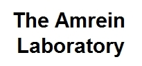 Amrein Lab
